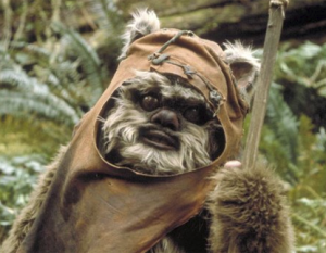 Wicket! Photo Credit - Star Wars Episode VI: Return of the JEdi