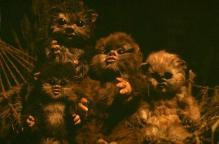 The Woklings are sad that Ewok Week is over. Photo Credit - Star Wars Episode VI: Return of the Jedi