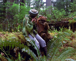 Leia begins to remove her helmet as Wicket munches on a snack. Photo Credit - Star Wars Episode VI: Return of the Jedi